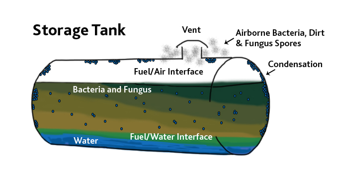 Prevent microbial growth in fuel tanks